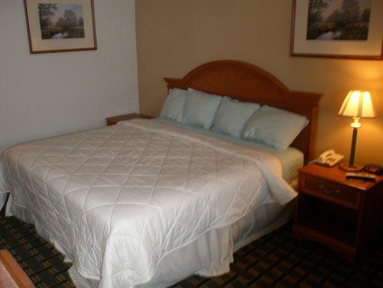 Americas Best Value Inn: Bed