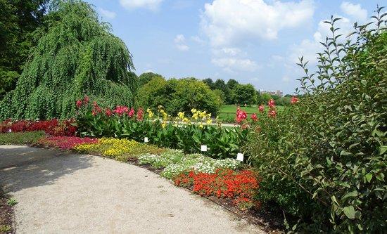 The Arboretum: huge park .. lots of flowers and walking areas