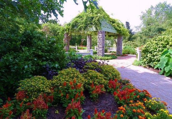 The Arboretum: part of the fenced area