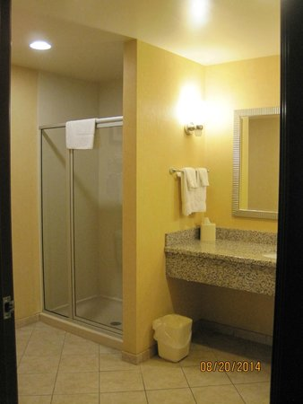 Comfort Suites West of the Ashley: suite bathroom
