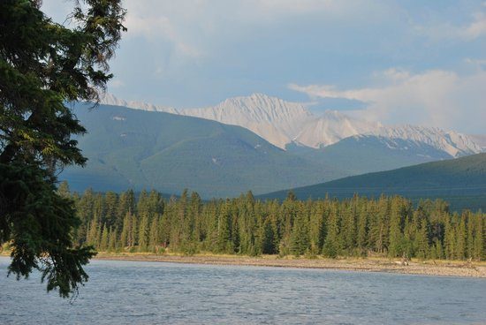 Pine Bungalows : Looking across the Athabasca River from the cabin grounds