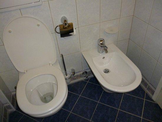 Golf Hotel Bled: Bidet in toilet