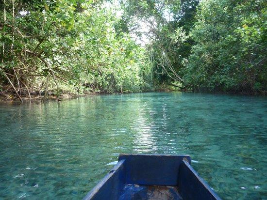 Riri Blue Hole: Canoe paddle