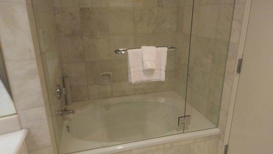 Little America Hotel Bath Shower
