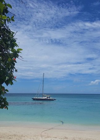 Mango Bay All Inclusive : Catamaran trip