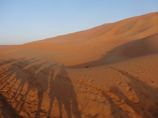 Qasr Al Sarab Desert Resort by Anantara: Camel ride