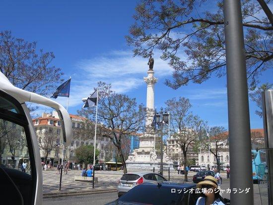 Rossio Square: リスボン・ロシオ広場のジャカランダは5月下旬が見ごろ