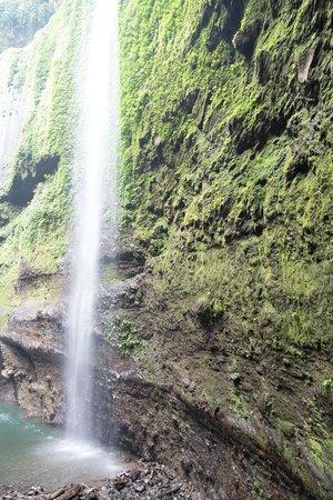 Madakaripura Waterfall: madakaripura