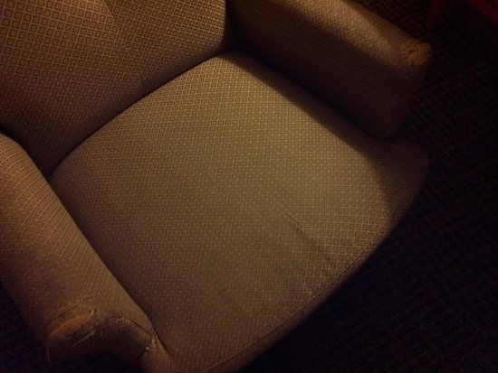 Gateway Hotel Dallas: Prechewed arm rests...