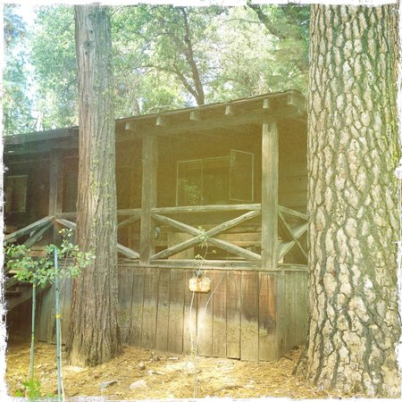 Evergreen Lodge at Yosemite: Family cabin - with double bed and bunks