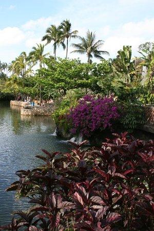 Polynesian Cultural Center: Красота