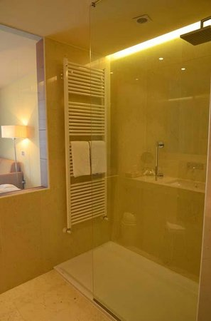 Hotel Val di Sogno: room 113 very large shower