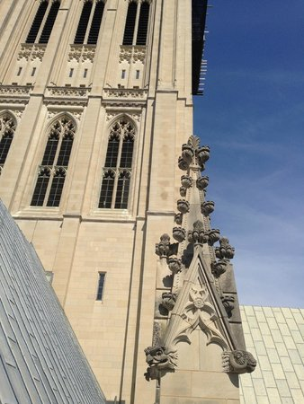 Washington National Cathedral: Behind the Scene tour - outside on the roof