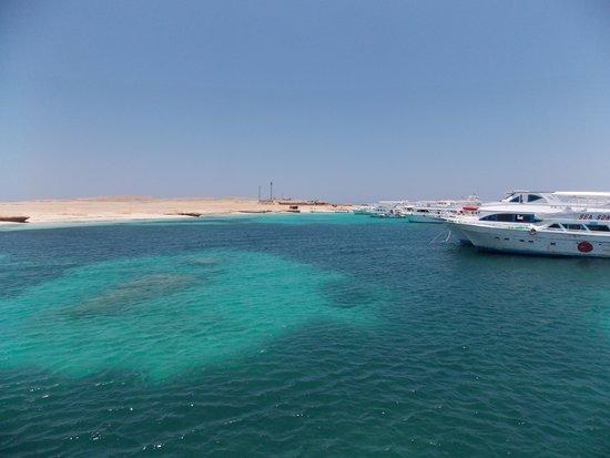 Careless Reef : Paradise Island