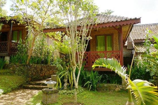Ijen Resto & Guest House