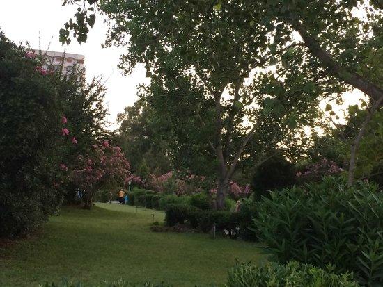 Athos Palace Hotel: gardens