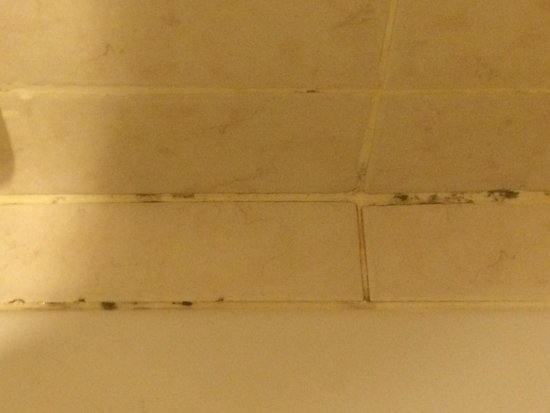 Amora Resort Tapae Chiangmai: Molded joints and dirty tiles in the bathroom