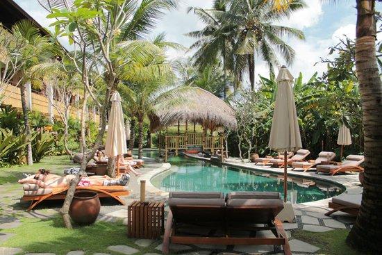 Alaya Resort Ubud: Lagoon-shaped pool