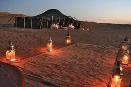 Camel Safari Camp