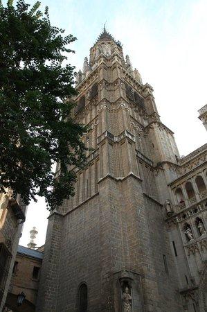 Catedral Primada : Кафедральный собор