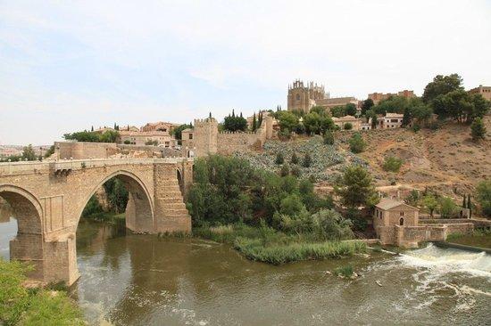 Puente de San Martín: Мост