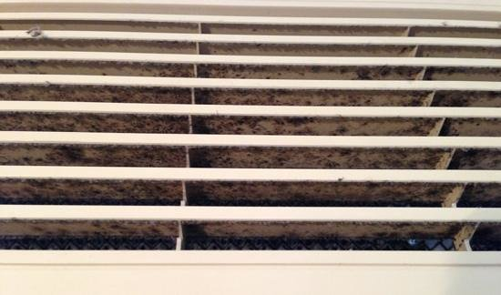 "Travelodge Hotel Sydney : After being moved into a ""cleaner"" room the A/C vent was full of mould and dust. Asthma flared u"