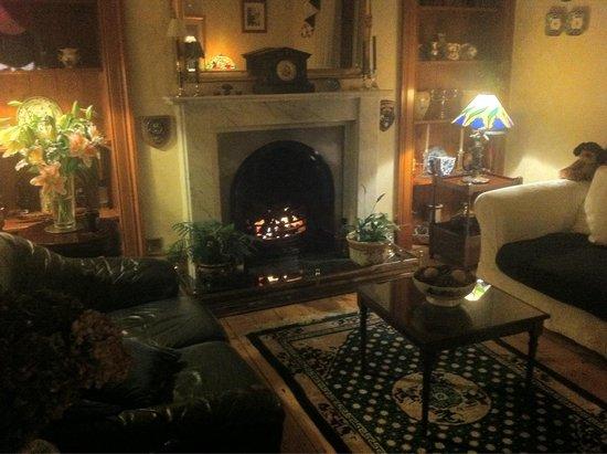 Ryeford Guest House: Gemeinschaftsbereich