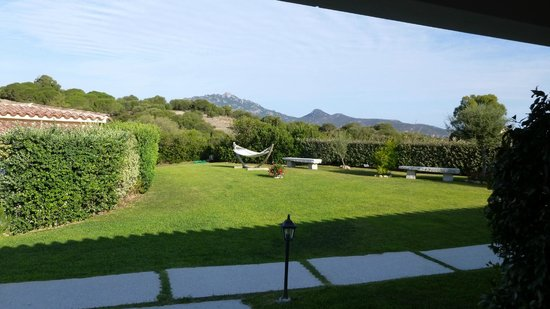 Cento Ulivi: View from our terrace