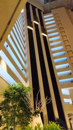 Hyatt Regency Grand Cypress : lobby
