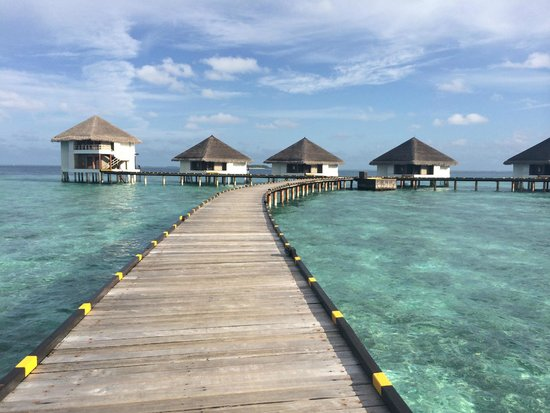 Adaaran Club Rannalhi : Water villas