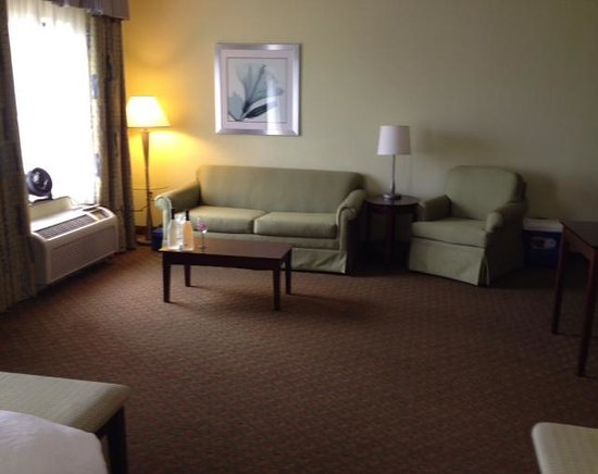 Hampton Inn & Suites Orlando - South Lake Buena Vista: living room area