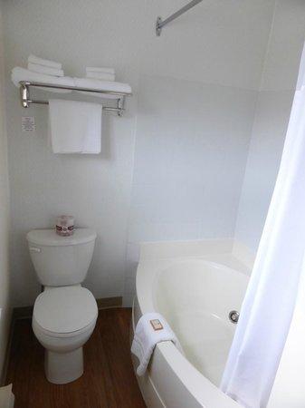 Crystal Springs Motel: bathroom in the standard king room