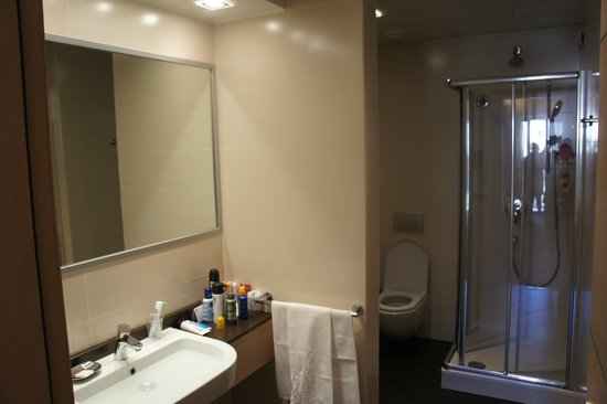 iQ Hotel Roma: Sink and Shower Cubicle