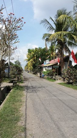 Villa Taman di Blayu: Local village street