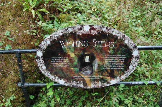Blarney Castle & Gardens: les marches des souhaits