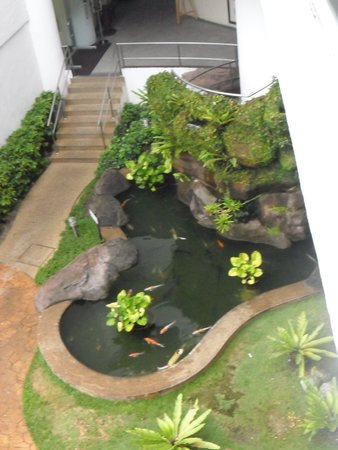 Flamingo Hotel by the Beach, Penang: koi fish pond