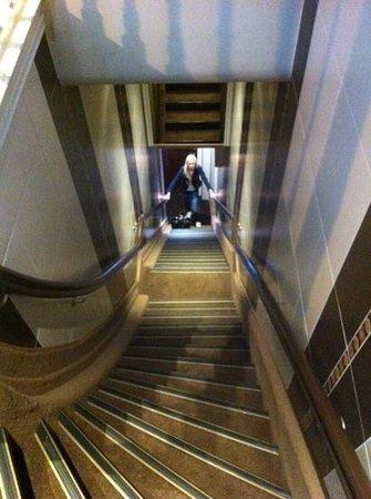 Clemens Hotel: лестница для спортсменов