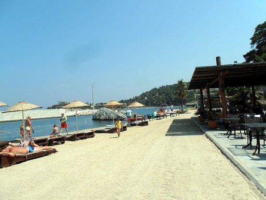 Pine Bay Holiday Resort : PRES DE LA MARINA