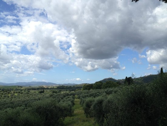Pieve di Caminino Historic Farm : View from estate