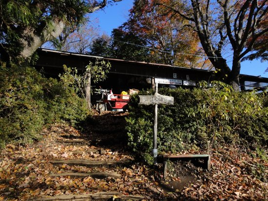 Mt. Kagenobu : 景信茶屋