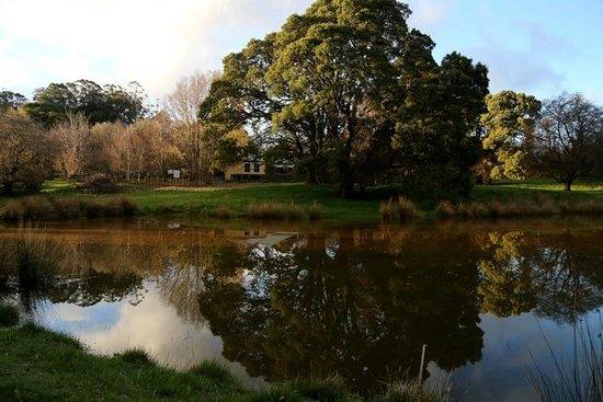 بلاكوود بارك كوتيدجيز: View across the dam at Blackwood Park