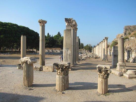 Antigua ciudad de Efeso: Ephesus