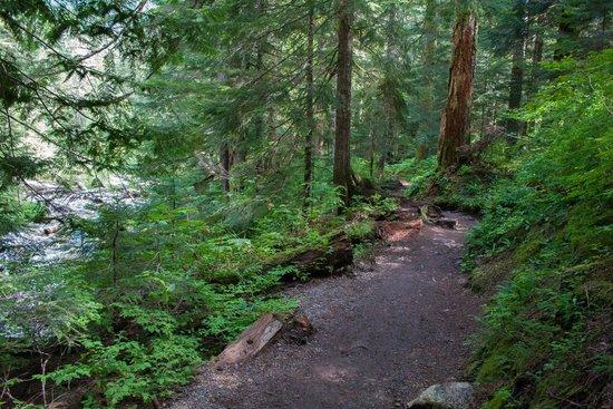 Denny Creek trail