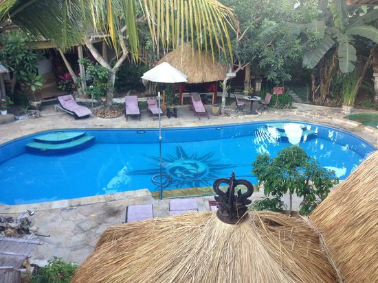 Serenity Eco Guesthouse and Yoga : pool