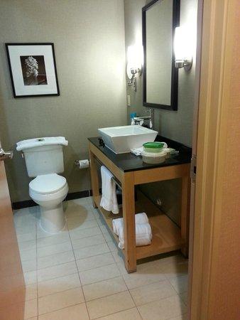 Cambria Hotel Raleigh-Durham Airport: Bathroom