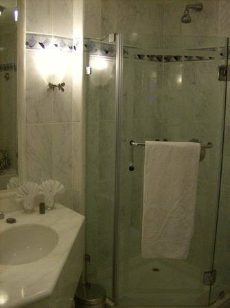 Carlton Palace Hotel: Bathroom (shower side)