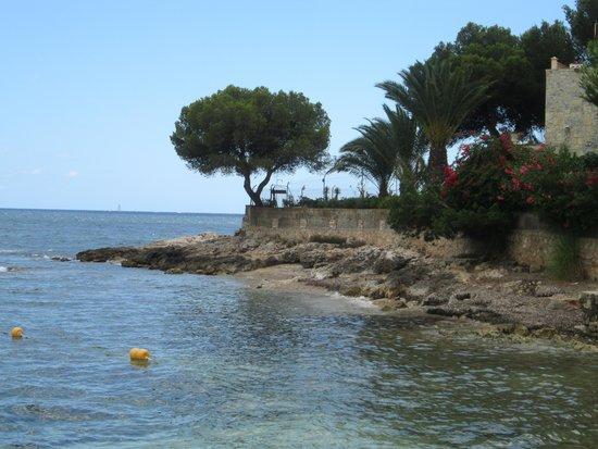 Hotel Son Caliu Spa Oasis: il mare davanti all hotel