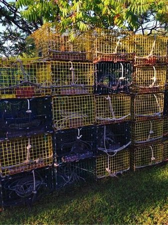 Nunan's Lobster Hut: Lobster traps in the parking lot