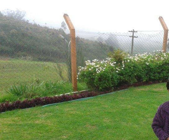 Delightz Inn: Garden and outside View