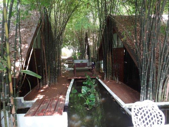 Milky Bay Resort: Extérieur chambre